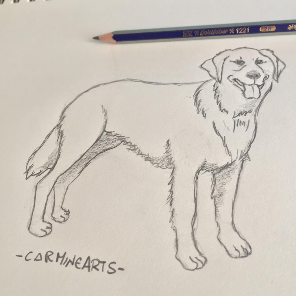 Come disegnare un cane by carminearts