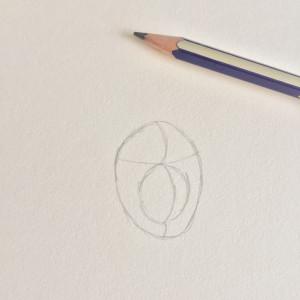 Come disegnare un cane fase 1