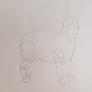 Come disegnare un cane fase  3a