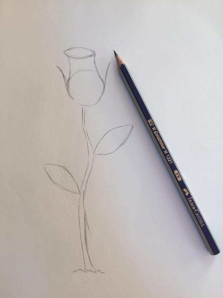 come disegnare una rosa fase 2