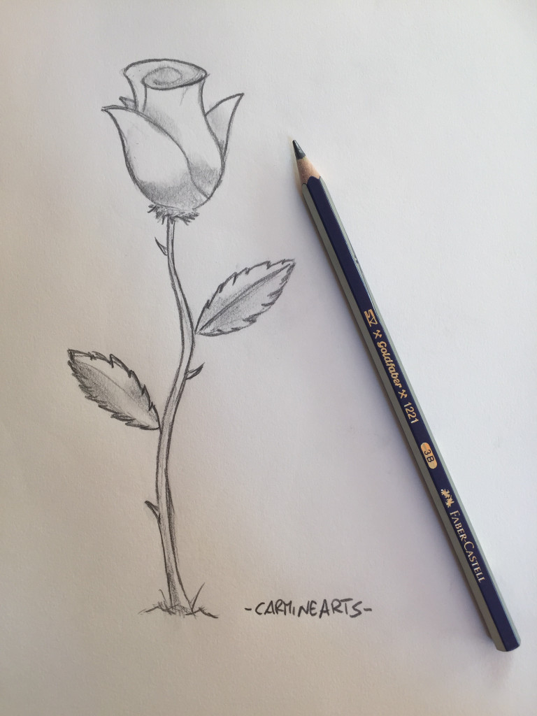 fase finale di come disegnare una rosa fase