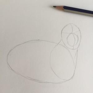 Come disegnare un cane fase 2
