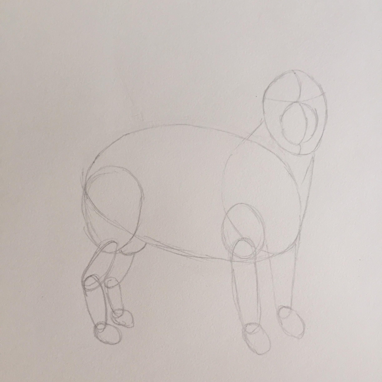 Come Disegnare Un Cane A Matita Carminearts