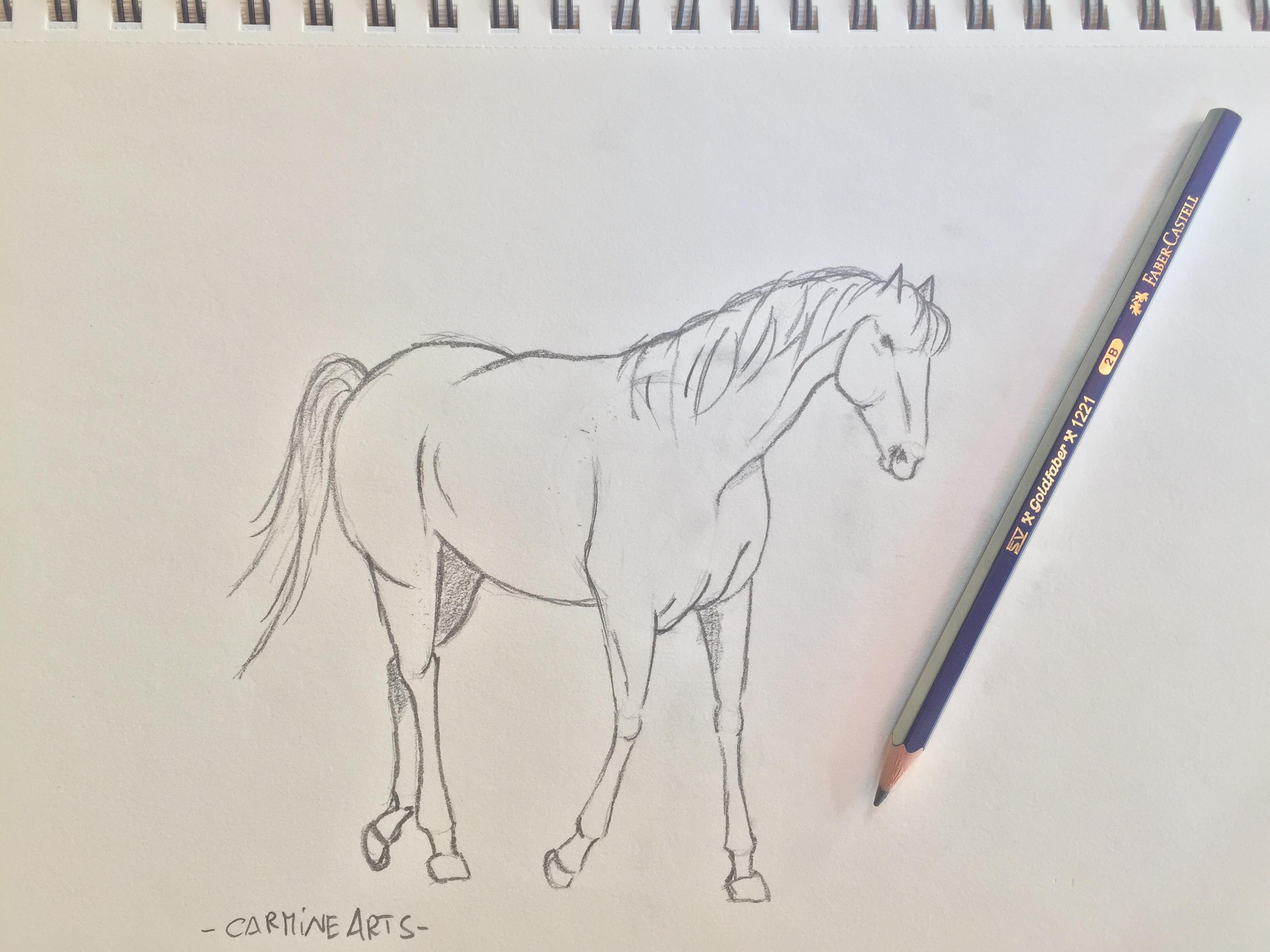 Come disegnare un cavallo